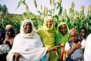Suiza devuelve 321 millones de dólares a Nigeria