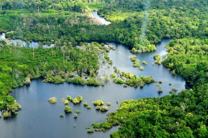 Follia peruviana: approvato il piano per la costruzione di un'autostrada nella Foresta Amazzonica