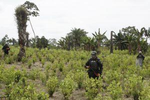 Defensoría del Pueblo colombiana alerta sobre situación humanitaria en Tumaco