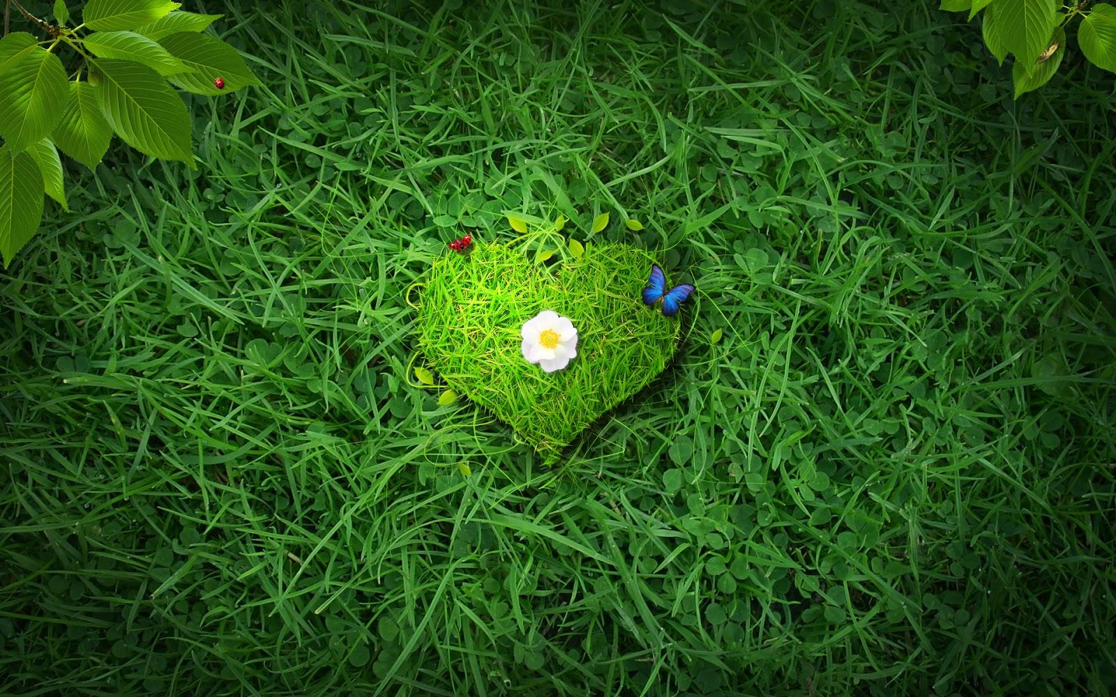 Сердце из зелени  № 1599039 загрузить