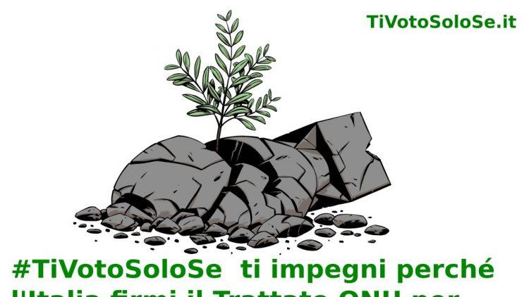 @TiVotoSoloSe