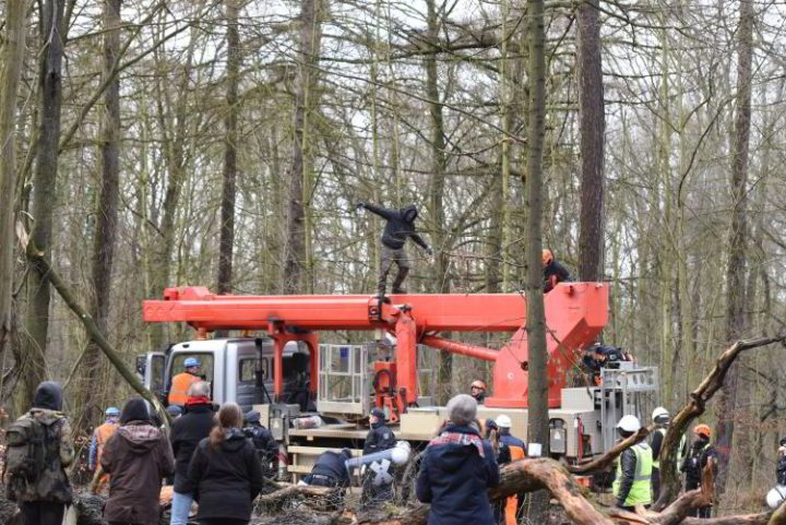 Hambacher Forst: Jetzt erst recht! – Aufruf zum deutschlandweiten Aktionstag am 03. Februar