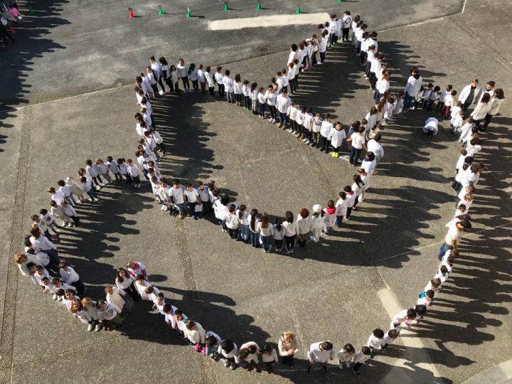 Paz Ceip Plurilingue de Covas IMG_5139-30-01-18-02-06