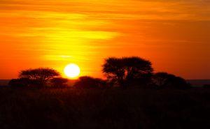 Αφρικανικές δημοκρατίες σε κρίση