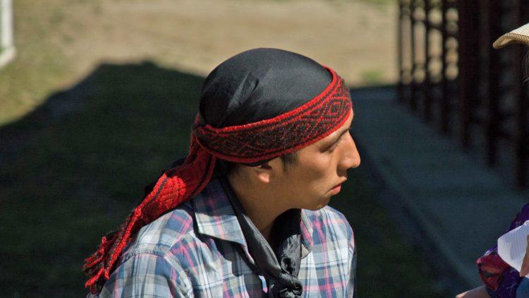 Facundo Jones Huala mapuche