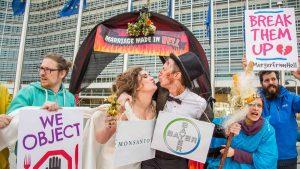 Bayer-Monsanto-Fusion: EU zementiert überholtes Landwirtschaftsmodell