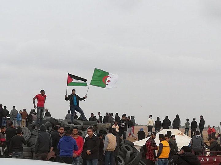 Gaza: prosegue la grande marcia
