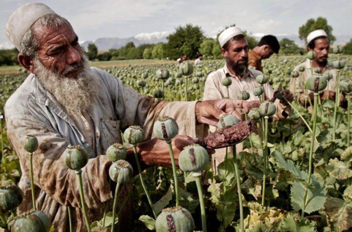 La guerra in Afghanistan e gli interessi stranieri