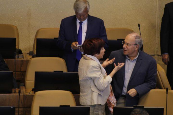 """Hirsch por Frente Amplio: """"Somos coalición porque tenemos un proyecto común"""""""