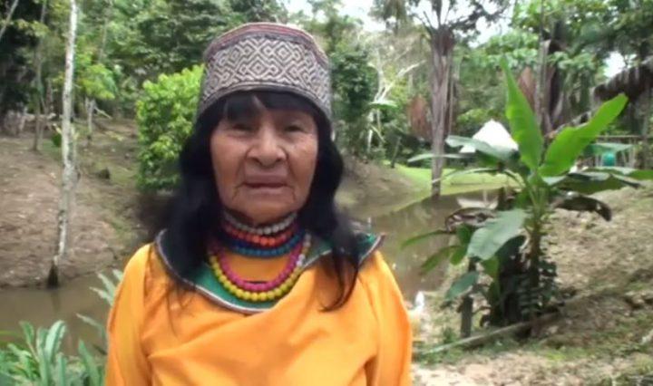 Perù: tra l'omicidio di Olivia Lomas e la minaccia alla Foresta Amazzonica