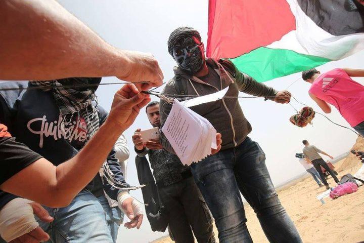 Gaza: más mártires, más heridos, pero la marcha no se detiene