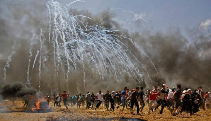 ¿Cuántos muertos palestinos puede aceptar el mundo sin inmutarse?