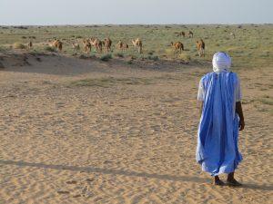 Veredicto inflexible de los expertos del CERD en las Naciones Unidas: Mauritania no respeta la Convención Internacional sobre la Eliminación de todas las Formas de Discriminación Racial