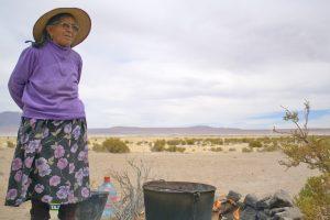 Derechos Humanos y Pueblos Indígenas en Chile hoy: las amenazas al agua, a la biodiversidad y a la protesta social