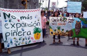 A propósito de un reciente reportaje sobre la piña costarricense difundido por la DW (Alemania)