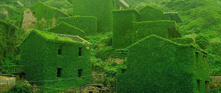 Se l'uomo se ne va, la natura si riprende ciò che è suo