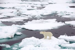 Climate Change Is The Central Challenge For Humanity