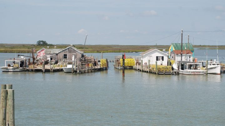 Tangier Island Is The Earth