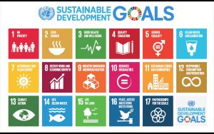 Sviluppo sostenibile: a che punto è l'Italia?