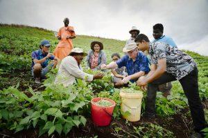 Alle Fiji si coltiva il cambiamento