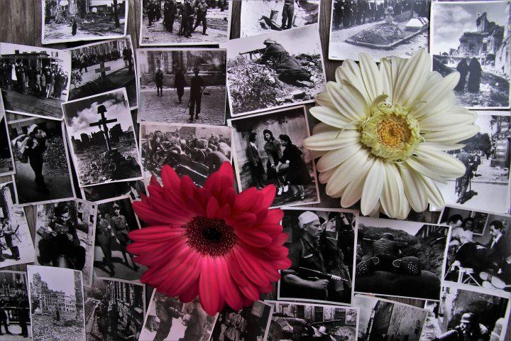 Heroísmo, terrorismo y violencia social: Notas en psicología política III