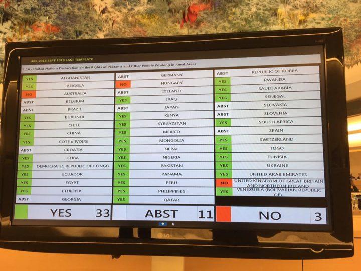Adottata la Dichiarazione sui Diritti dei Contadini, vittoria storica per i diritti umani
