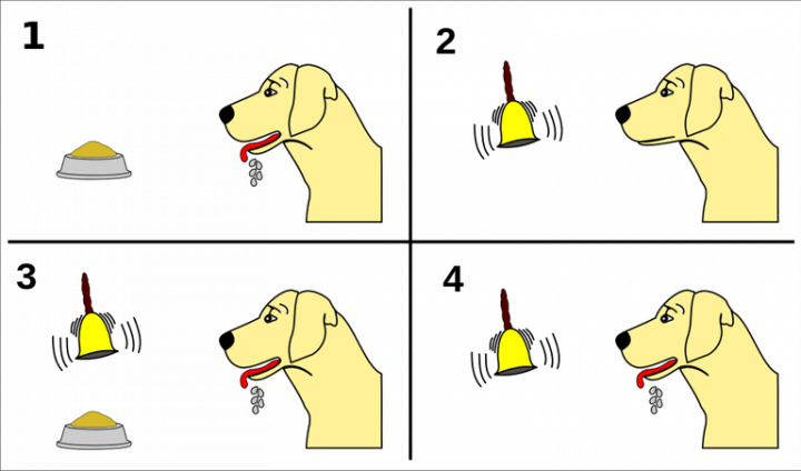 Classical Conditioning for Peace