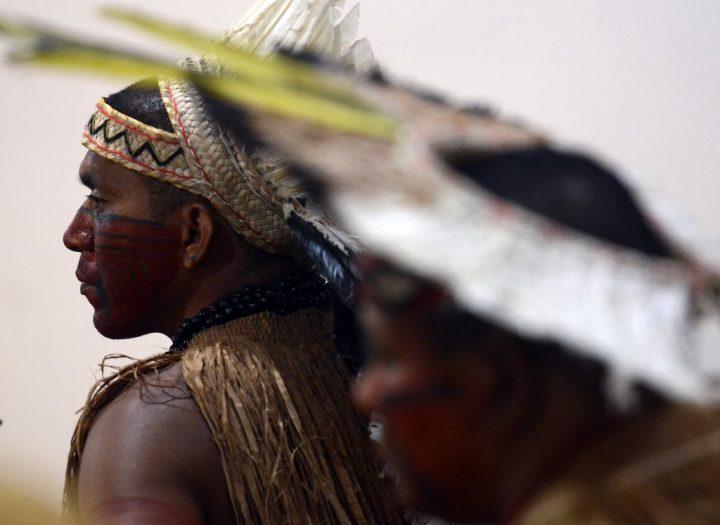 Bolsonaro ameaça Amazônia, seus povos e biodiversidade, alertam geógrafos paraenses