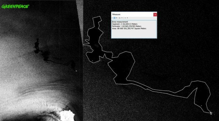 Collisione nel Santuario dei Cetacei: le immagini satellitari mostrano contaminazione idrocarburi su oltre 100 km quadrati