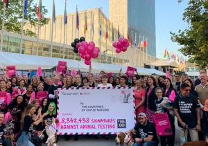 8,3 Millionen Unterschriften gegen Kosmetik-Tierversuche