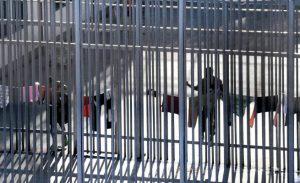 Perché il centro di detenzione per migranti di via Corelli non deve riaprire – corteo #NoCpr 1° dicembre
