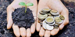B Corp Italia: le 100 aziende che fanno business per rigenerare società e ambiente
