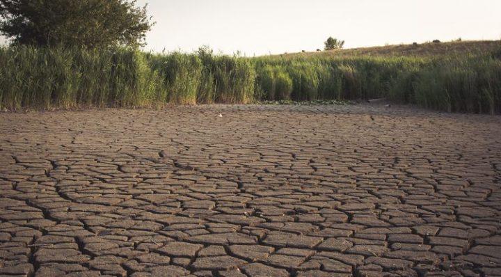 Gesundheitsexperten fordern stärkere Anstrengung der Bundesregierung für den Klimaschutz