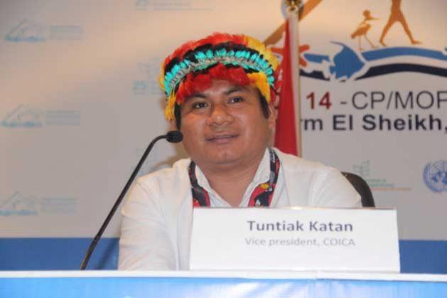 Indígenas reclaman nuevo acuerdo global para proteger la Amazonia