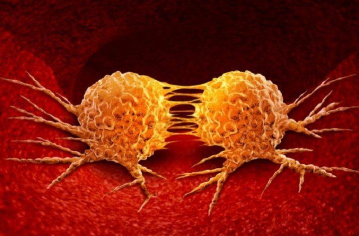 Científicos descubren fármaco que suprime la formación de metástasis