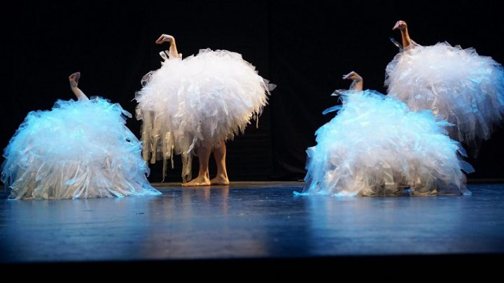 Crítica de Teatro Familiar: Pareidolia