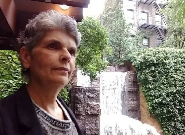 «Lo que se espera es que el flujo se mantenga y se agudice…»: Ligia Bolívar