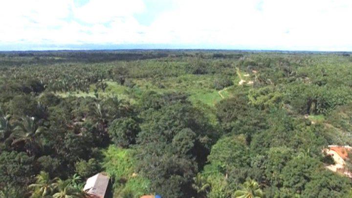 Brasil: el ataque del presidente a los derechos de los indígenas amenaza al Amazonas