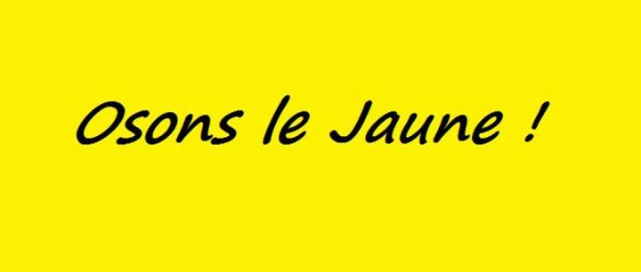 France: Gilets Jaunes Assemblée des Assemblées à Commercy les 26 et 27 janvier 2019