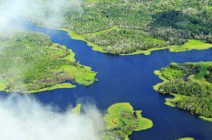 O Beabá do Sínodo Pan-Amazônico