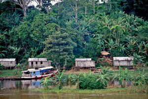 Obras de Bolsonaro para la Amazonia abren la selva al agronegocio
