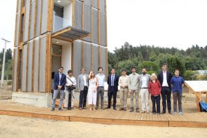 Edificios de madera, una innovación de la ingeniería al uso del pino radiata