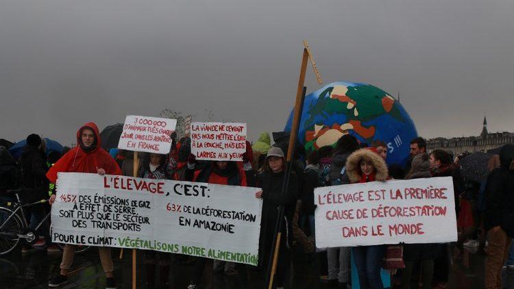 Marche pour le Climat à Bordeaux17