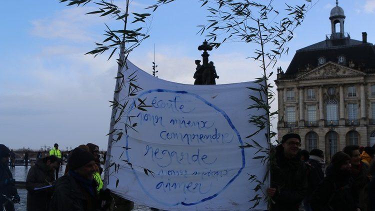 Marche pour le Climat à Bordeaux23
