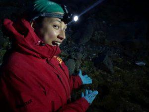 Desde suelo Antártico a las celdas solares: Una idea simplemente genial