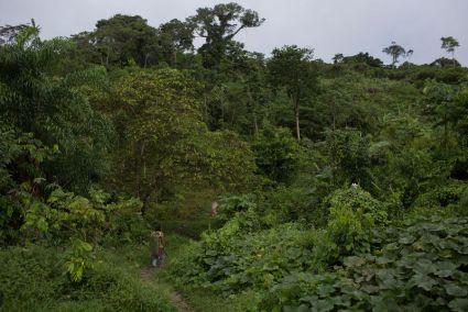 Preoccupazione per una spedizione dell'Agenzia brasiliana FUNAI