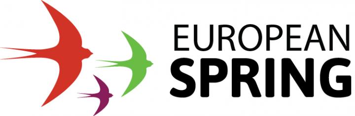 Europawahl: Die Schwalbe, die den europäischen Frühling einleiten soll