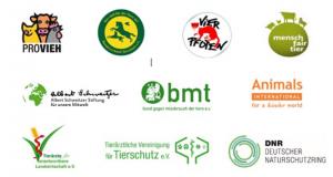 Offener Brief an Ministerin Otte-Kinast: Beenden Sie Lebendtierexporte in Drittstaaten!