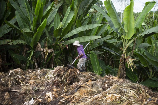 Ecuador: el caso Furukawa y la existencia de esclavitud en el país