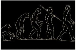 Homo luzonensis: Neue Menschenart entdeckt